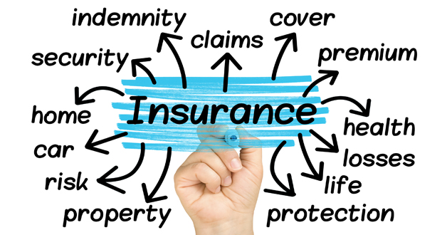 Policyholder's Rights